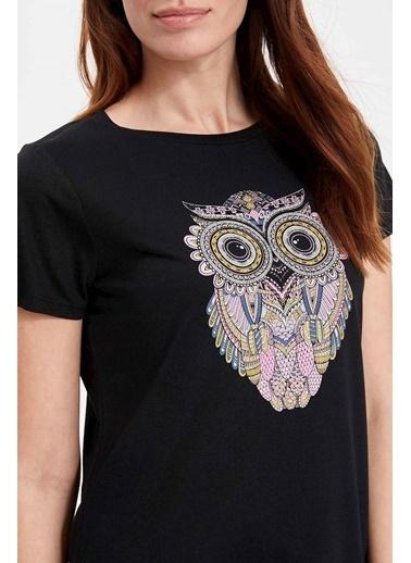 DeFacto Baykuş Figür Baskılı Kısa Kollu T-shirt Siyah